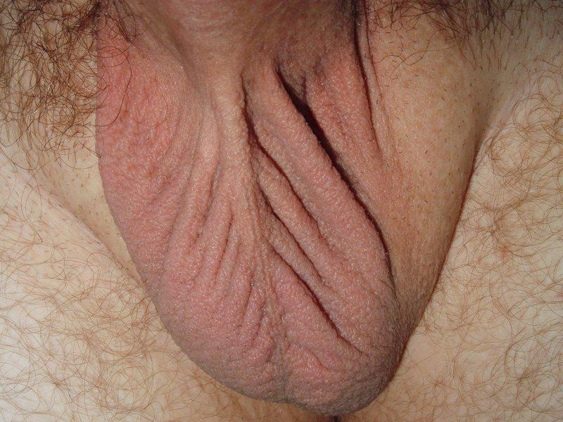 Shaved scrotums pics